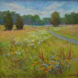 virginia-wildflowers